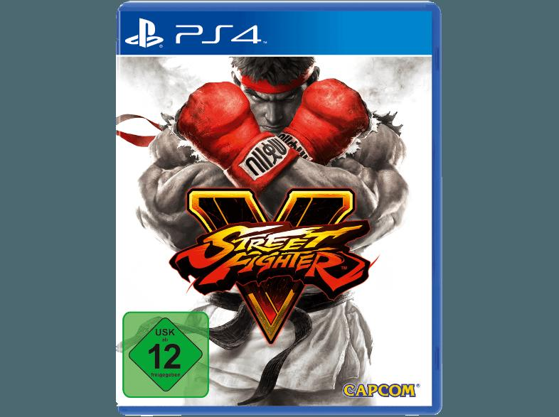 Street Fighter 5 [PlayStation 4]
