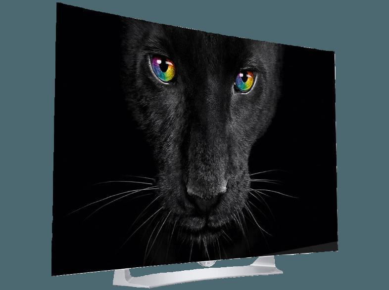 bedienungsanleitung lg 55eg9109 oled tv curved 55 zoll full hd 3d smart tv. Black Bedroom Furniture Sets. Home Design Ideas