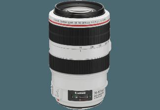 CANON EF 70-300mm f/4-5.6L IS USM Telezoom für Canon EF (70 mm- 300 mm, f/4-5.6)