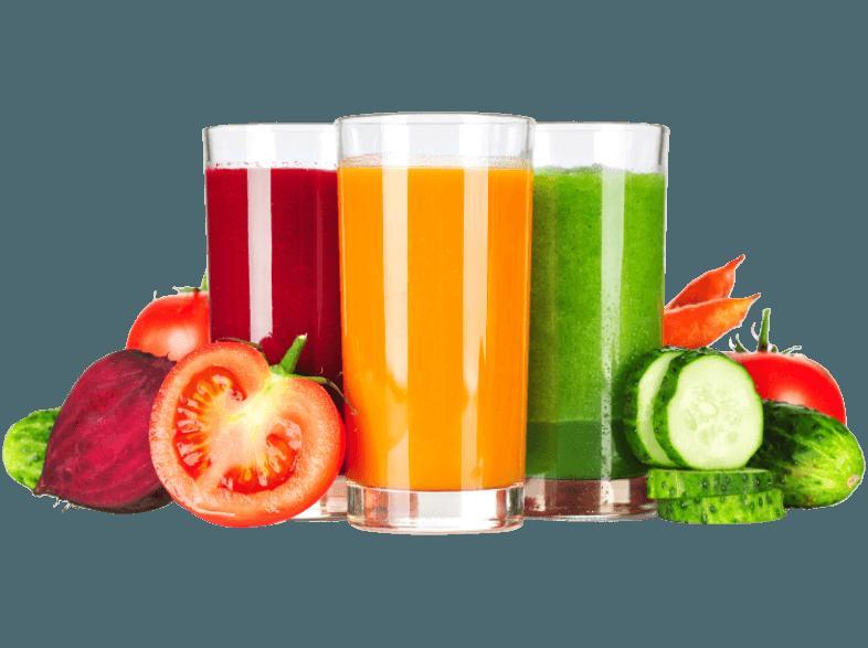 bedienungsanleitung gastroback 40137 smart health juicer  ~ Entsafter Bedienungsanleitung