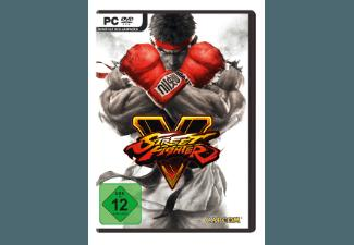 Street Fighter 5 [PC]